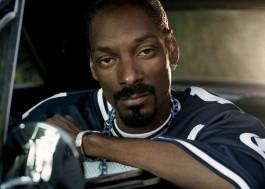 Snoop Dogg acha que o One Direction deveria voltar o quanto antes!