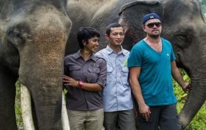 """Leonardo DiCaprio pode entrar para """"lista negra"""" da Indonésia"""