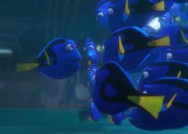 """""""Procurando Dory"""" ganha um novo trailer dublado com váááárias cenas inéditas"""
