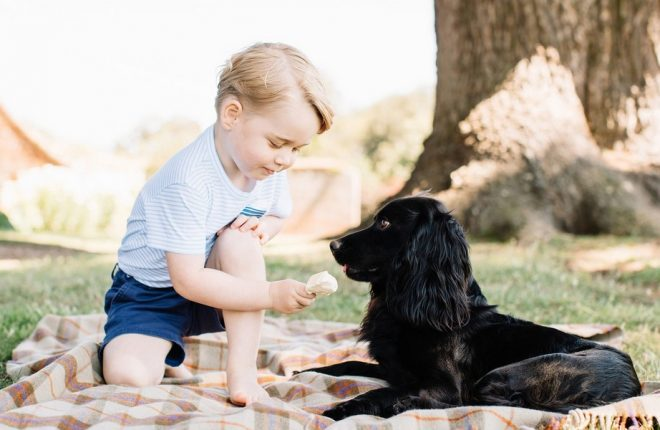 baby-george-