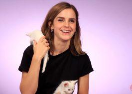 Essa entrevista da Emma Watson brincando com gatinhos é a melhor coisa do dia!
