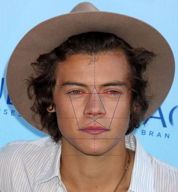 harry styles golden ratio