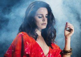 Lana Del Rey é atacada por fã durante show