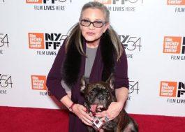 """Cachorro de Carrie Fisher reconheceu a atriz ao assistir """"Star Wars: Os Últimos Jedi"""""""