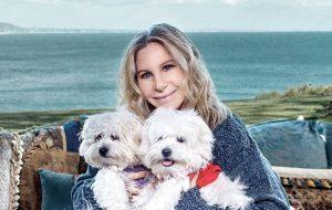 Barbra Streisand explica como e porque clonou seu cachorro