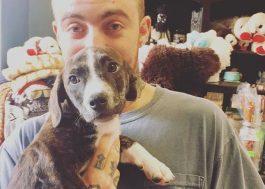Após morte de Mac Miller, Ariana Grande teria adotado cachorro do cantor