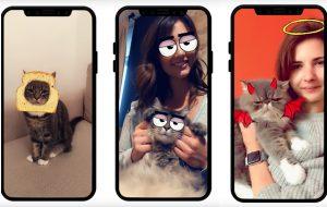 Gente! Snapchat agora detecta rosto de gatos para filtros e deu até vontade de voltar a usar
