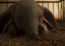 O que o Twitter comentou de mais legal sobre o trailer do Dumbo