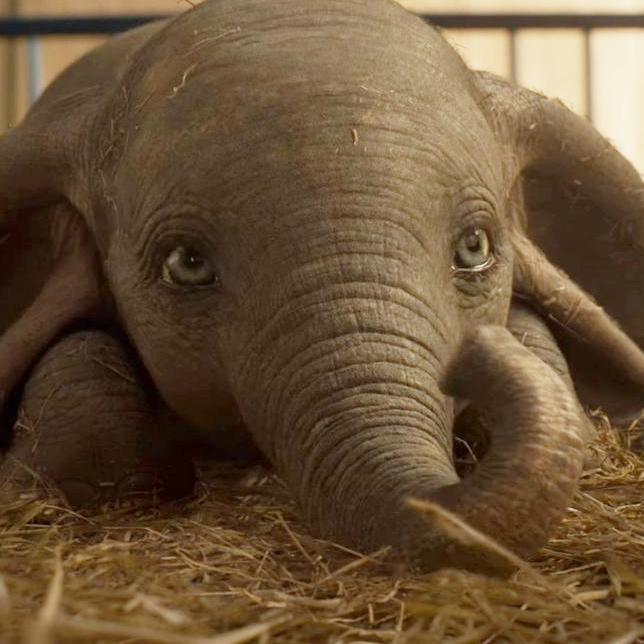 Trailer de Dumbo <3