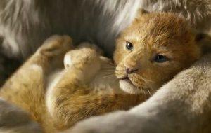 """Disney mostra novas cenas de """"Rei Leão"""" em evento e descrições apontam diálogo épico"""