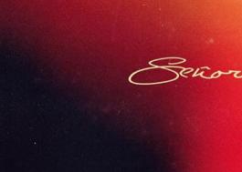 """Camila Cabello e Shawn Mendes vão lançar feat novo chamado """"Señorita""""!"""