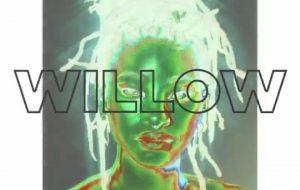 Surpresa! Willow Smith anuncia que seu novo álbum chegará em julho!