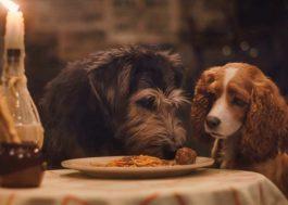 """Novo trailer de """"A Dama e o Vagabundo"""" mostra cena clássica do espaguete"""