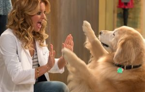 "Cachorro de ""Fuller House"" morre aos quatro anos e elenco lamenta"