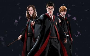 Harry Potter ganha site para querentena