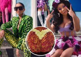 """Anitta envia flores para Cardi B após o lançamento de """"Me Gusta"""""""