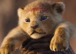 """Sequência do live-action de """"O Rei Leão"""" está em desenvolvimento com diretor de """"Moonlight"""""""