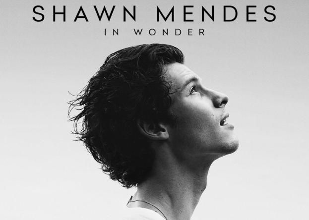 """Pôster de """"In Wonder"""" (Divulgação)"""