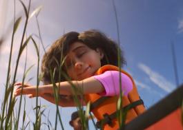 Disney+ anuncia lançamento de seis novos curtas da Pixar em teaser fofo