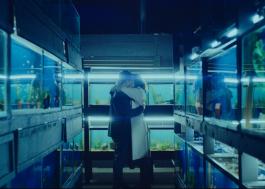 Trailer comovente de drama protagonizado por Olivia Cooke mostra uma nova pandemia fictícia