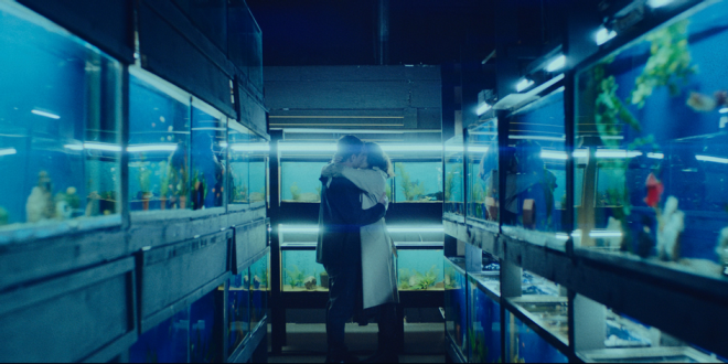 """""""Little Fish"""" estreia em 5 de fevereiro de 2021 (Reprodução)"""