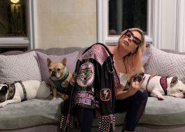 Após sequestro, cães de Lady Gaga são resgatados em segurança