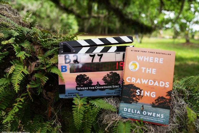 O filme é protagonizado por Daisy Edgar-Jones e produzido por Reese Witherspoon (Divulgação)