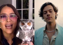 Salma Hayek diz que coruja de estimação tossiu bola de pelo em Harry Styles