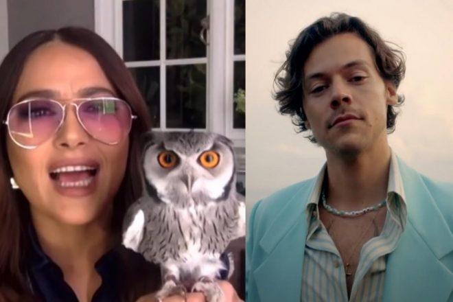 A atriz contou que Harry lidou bem com a situação (Reprodução)