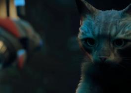 """Prévia de """"Stray"""" apresenta intrigante aventura felina em cenário distópico"""